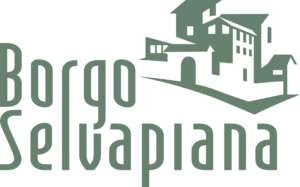 Icona Borgo Selvapiana